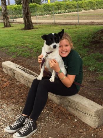 4H youth dog project