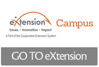 Enter eXtension online